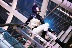 Ghost in the Shell by yui930