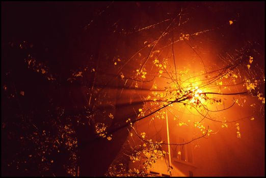 Scatters the light in the fog by YxxX-BudaiBence-XxxY