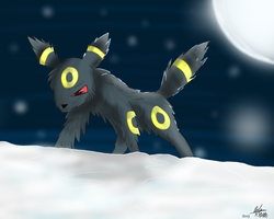Shadow in the Snowstorm by firenight617