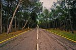 Road to the unknown. by MarioGuti