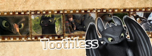 Toothless | Timeline Facebook by Howie62