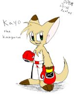 Kayo the Kangaroo by DinyDino9