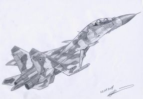 Su-30 mki by GrafDeWolfGuN