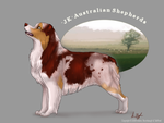 Red Merle Boy -com by tailfrost