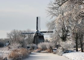 snow in Holland by theaver