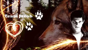 Widescreen Jacob Black by Laloo