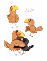 hawk by Kel-Del