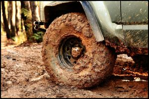 Stuck and Muddy 3 by PTC