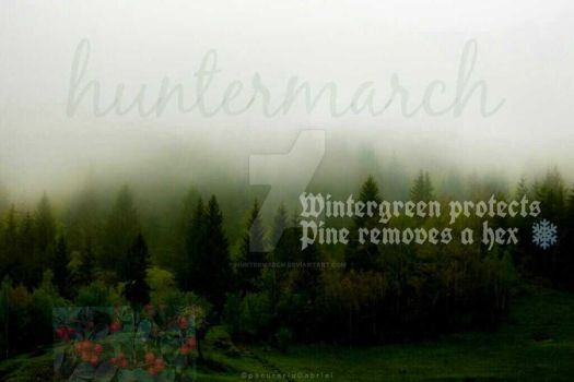 Wintergreen  *hunter's hexes by huntermarch