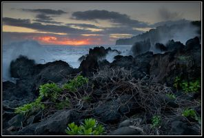 Morning at Big Island, Hawaii by IgorLaptev