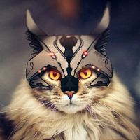 helghast maine coon by easycheuvreuille