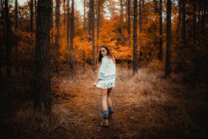 forest fire 2 by EliPfeifle