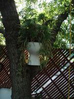 tree toilet by Lady-Leviathan104-24