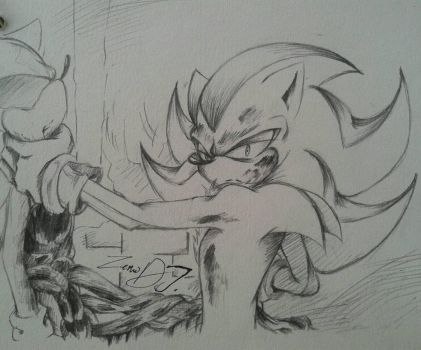 Shadow VS Sonic by InTheShadow123