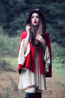 little red riding hood by caitlin-may