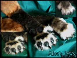 Alices Feral Paws by Magpieb0nes