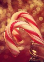 week3: candy canes by cloe-patra