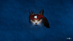 Windows 10 Wallpaper : Angry Ninja Cat by zhalovejun