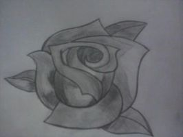 Roses Are Grey by Brightleaves