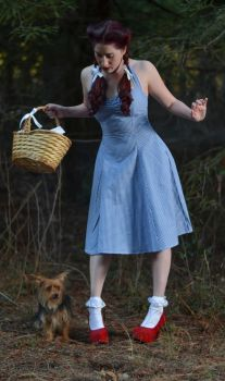 Wizard of Oz: Dorothy and Toto 2 by Agent-Paradox