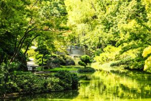 Japanese Garden at The Fort Worth Botanical Garden by Broken-Weasel