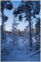 Winter Afternoon 2 by Eirian-stock