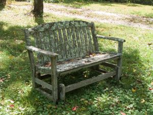 Old Wooden Bench-1 by RowyeStock