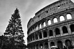 Colosseo by ViOLeTjaniS