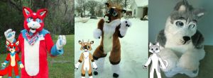Fursuits and their original designs. by TwerkOnThatShark