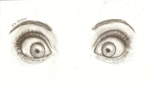 Eyes by Alaskavel