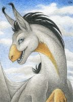 ACEO for Tashgoose by Dragarta