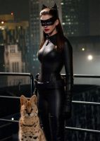 Selina Kyle and Her Daemon by LJ-Todd