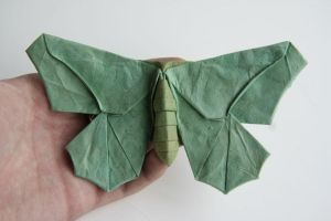 Butterfly-2 by Dreams-Made-Flesh