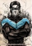 NIGHTWING by J-Estacado