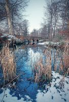 Minnowburn Winter 09 IV HDR by Gerard1972