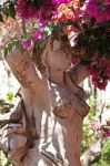 Beauty with Bougainvillea by AgiVega