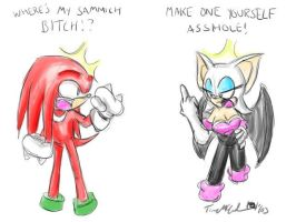 Knuckles and Rouge Fight by t2thefox