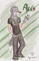 Recognize me. by StrongWolf25
