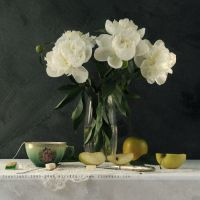 Still Life With Peonies by AlexEdg