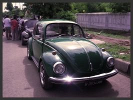 Indonesia VW Fest - Type 1 03 by atot806