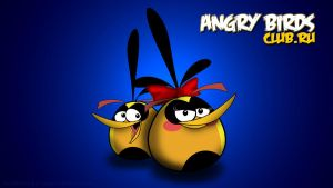 Angry Birds Wallpaper:Orange Birds(Love) by nikitabirds