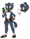 Augusten the Raccoon by s-m-o-l