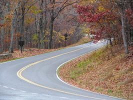 Winding Road by LuLove