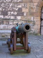 Cannon by RayvenStock