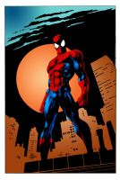 Spiderman by alexman26