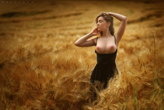 My field of emotions by artofdan70