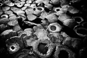 Giants causeway stones by Tmcrphotography