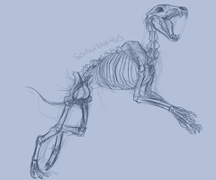 Dire Wolf wip by soulwithin465