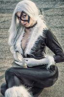 Meow ?  ) by Fiora-solo-top