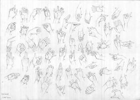 60 hands study by TyphonArt